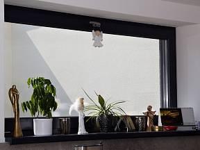 Podzimní období je nejvhodnější pro kontrolu stavu oken.