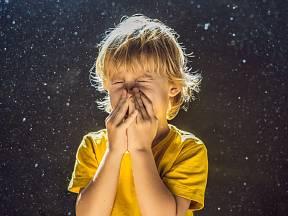Malí a vytrvalí roztoči stojí za alergií na prach. Jak se jich zbavit?