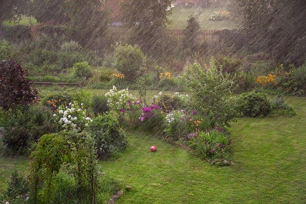 zahrada déšť