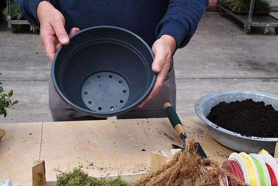 Rostliny vyklepneme z květináčů, většinou stačí plastový květináč zmáčknout na spodní straně.