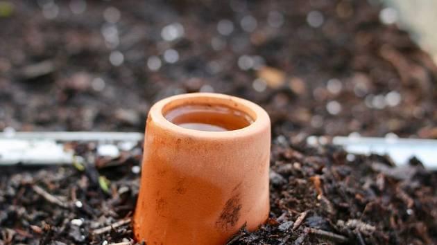 Hrdlo zavlažovací nádoby zvané olla ční nad půdu, zásoba vody je schovaná podzemí