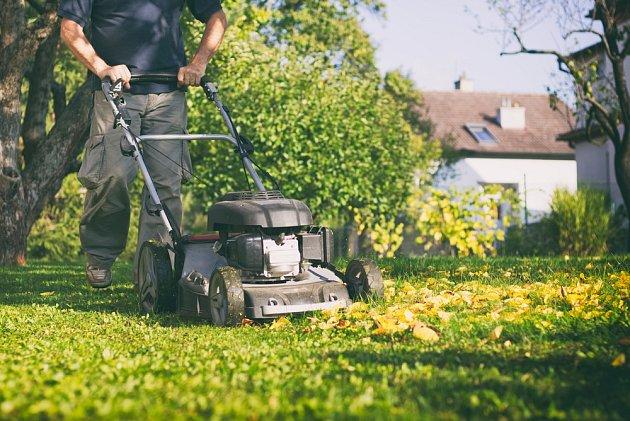 Místo hrabání můžeme na odstranění listí z trávníku použít sekačku.
