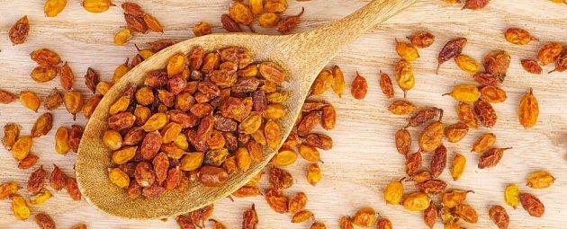 sušené plody rakytníku