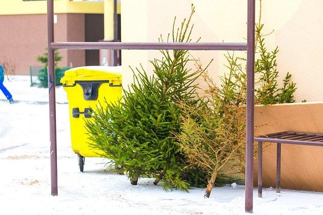 Vánoční stromky se nejčastěji odkládají poblíž kontejnerů na komunální odpad.