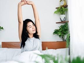 Vstávejte odpočatí díky vhodným květinám v ložnici.