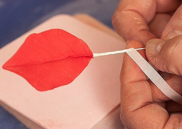 Drátek obalíme floristickou páskou, kterou natřeme potravinářskou barvou