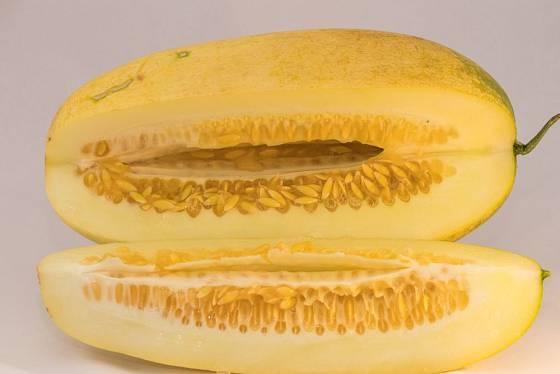 K jídlu je přezrálá okurka nevhodná, k semenaření je ideální