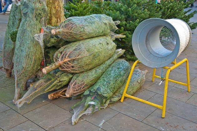 Stromky nakupujte venku