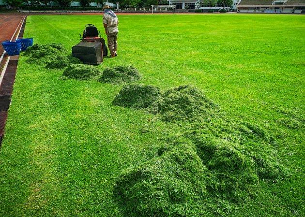 Kam s posekanou trávou? Poradíme vám.
