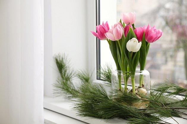 Tulipány na parapetu nám mohou dělat radost kdykoli v roce.