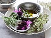 Levandule, tymián a rozmarýn k přípravě bylinkového oleje.