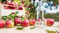Úrodu jablek můžete uschovat do láhve