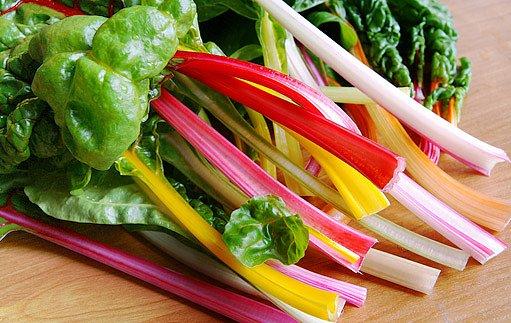 mangold - vytrvalá zelenina