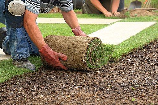 pokládání trávníku