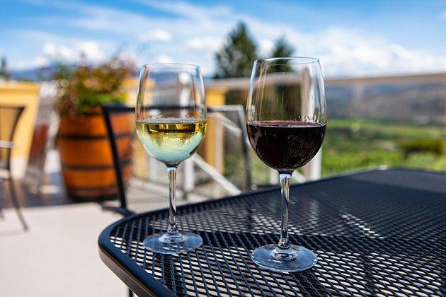 Je pro naše tělo lepší víno červené, nebo bílé?
