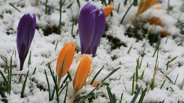 Březnové počasí je ještě nestálé, ale jaro je už cítit ve vzduchu