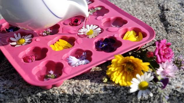 ledové kostky s jedlými květy