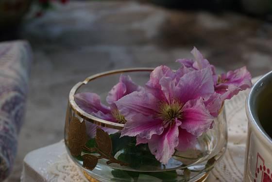 Drobný květinový detail na malý zahradní stolek
