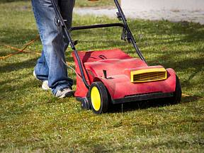Péče o trávník je důležitá.