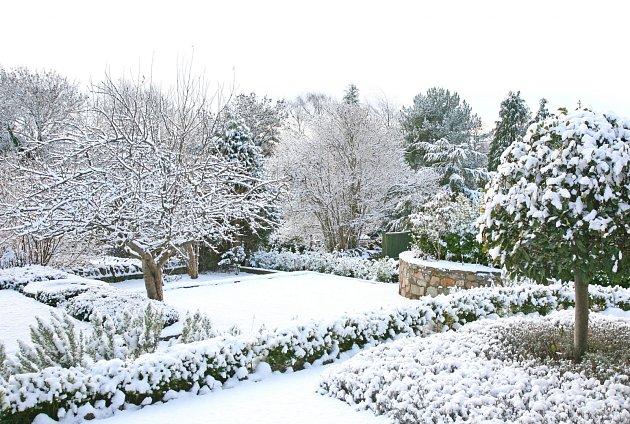 Sníh slouží jako izolace