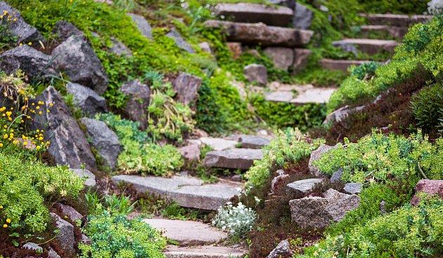 kamenné schůdky ve skalce