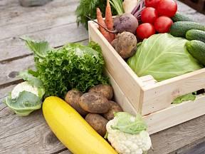 Pěstování biopotravin podléhá přísným pravidlům.