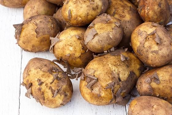 Nové brambory poznáte i podle jemné slupky.