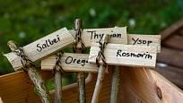 Jmenovky na bylinky můžete vyrobit z mnoha odlišných materiálů.