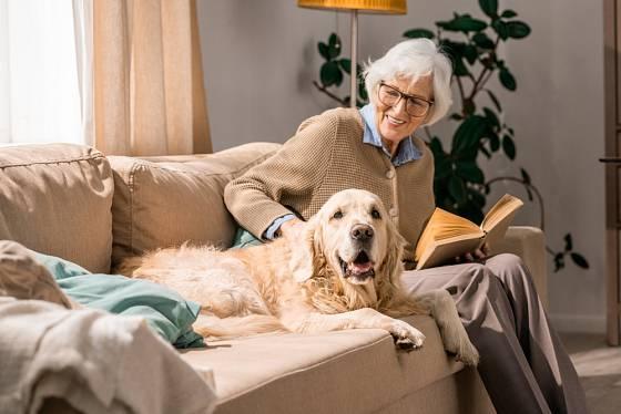 Pro osamělé seniory je milovaný pes nejlepším zpestřením každodenního života.