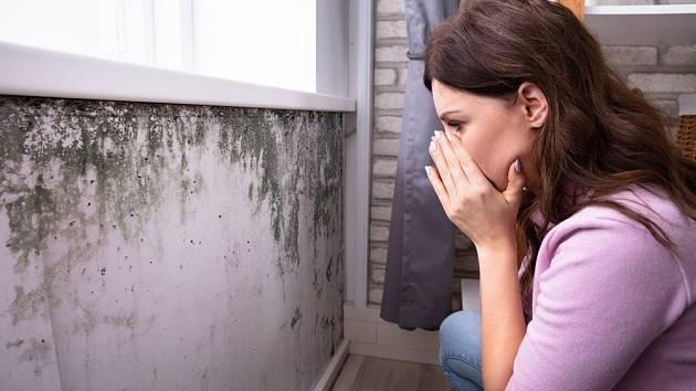 Plíseň v bytě je vždy pohroma.