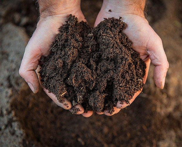 Kvalitní kompost je jemný, kyprý a má lesní vůni