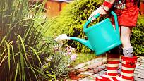 Studniční voda slouží nejčastěji k zalévání zahrady