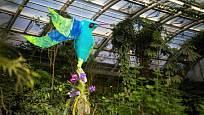 Floristka Klára Franc Vavříková se snažila návštěvníkům výstavy navodit blíží návštěvníkům atmosféru jihoamerického Ekvádoru.
