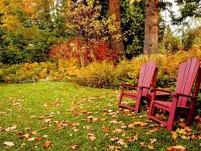 Spadané listí bychom měli z trávníku odstraňovat průběžně.