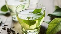 Čaj z čerstvých lístků pravého čajovníku