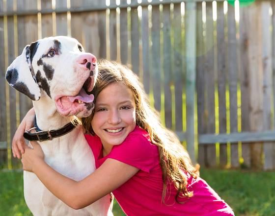 Zvláště k dětem jsou německé dogy láskyplné, přítulné a přívětivé.