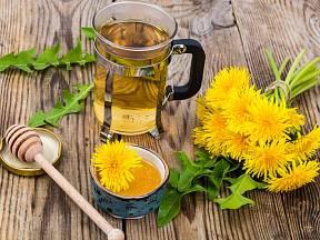 Pampeliškový čaj