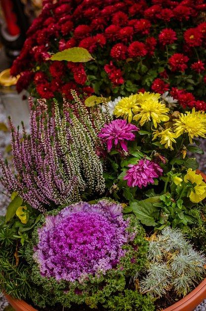 Letní výzdoba hrobu je specifická - výborné jsou skalničky nebo letničky, pokud je hrob na slunném místě