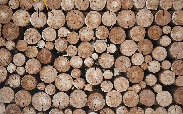 Záleží na vás, jestli si chcete nachystané dřevo kupovat nebo si ho zpracovávat sami.