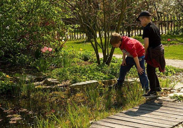 Děti zvlášť baví pozorování života u vodní hladiny.