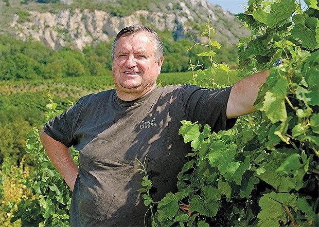 šlechtitel vína Miloš Michlovský