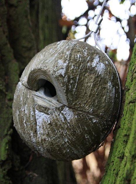 dřevocementová budka pro střízlíka