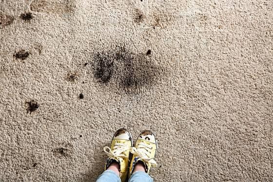 Skvrny od bláta nechte zaschnout a pak vysajte