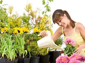 Správné zalévání není věda, ale je potřeba se naučit, co která rostlina potřebuje