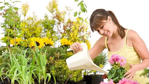 Jak poznat na rostlinách, že jim chybí dusík?