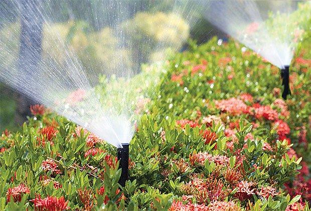 zahradní čerpadla pro provz zavlažovačů