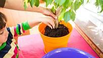 Když maminka dítěti ukáže, jak se o rostlinu starat, dítě se to rychleji naučí.