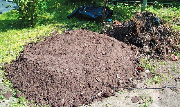 Takto dokáží žížaly zpracovat kompost
