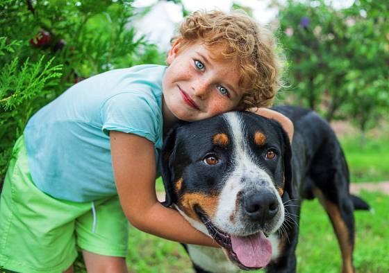U psa musíme pravidelně kontrolovat příznaky onemocnění například hubnutí, problémy s pohybem nebo změny chování.