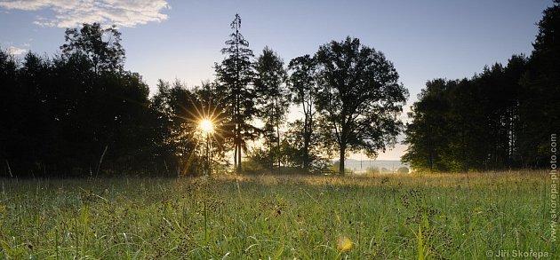 Táborsko, přírodní památka Kozlov